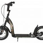 Bikestar Trottinette enfant 2 roues pour garcons et filles de 6-10 ans ★ Patinette enfant 12 pouces sportif ★ de la marque STAR-SKATEBOARDS image 1 produit