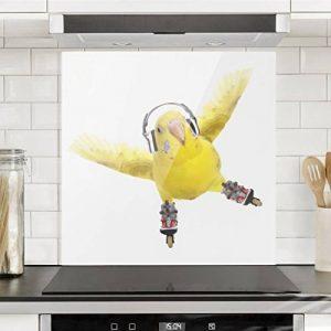 Bilderwelten Crédence en verre - Skate Parakeet - Carré 1:1, peinture murale revetement mural cuisine dosseret de cuisine impression sur verre fond de cuisine, Dimension: 59cm x 60cm de la marque Bilderwelten image 0 produit