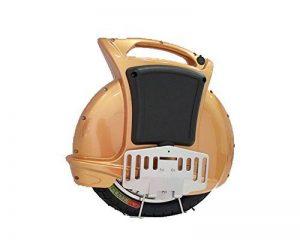 Monocycle électrique 350W de la marque HANKING PLANET image 0 produit