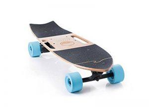 Riptide Electric Skateboards Longboard Motorisé Avec Grande Puissance Dans Un Petit Paquet Conçu Par Les Cavaliers Pour Les Cavaliers de la marque image 0 produit