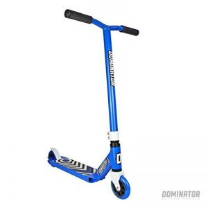 skate à deux roues pro TOP 12 image 0 produit
