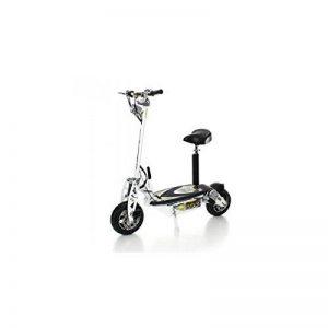 SXT scooters Trottinette électrique 1000 XXL 1600w Brushless Blanche Batterie plomb 48V 12Ah de la marque SXT scooters image 0 produit
