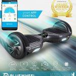 """Vainqueur du test* 6.5"""" Hoverboard Bluewheel HX310s Smart APP Self Balance Scooter, marque Allemande avec norme UL2272, mode sécurité enfant, Skateboard électrique, Bluetooth, e-skateboard Gyropode de la marque Bluewheel Electromobility image 1 produit"""